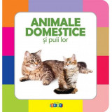 Animale domestice si puii lor
