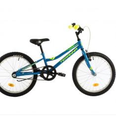 Bicicleta Copii DHS Junior Teranna 2001 Albastru 20