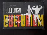 Culturism - Lazar Baroga / R3S