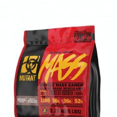 PVL - Mutant Mass , 2,27 kg