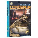 Set creativ, model schelet 3D dinozaur T-Rex, 30×5.5×30 cm