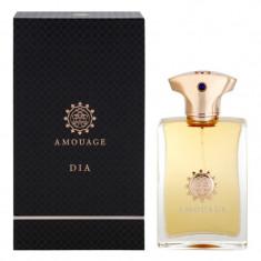 Dia, Barbati, Apă de parfum, 50 ml, Amouage foto