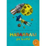 Habarnam pe Lună (ebook)