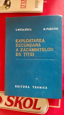EXPLOATAREA SECUNDARA A ZACAMINTELOR DE TITEI -- I. NICULESCU, N. PUSCOIU foto