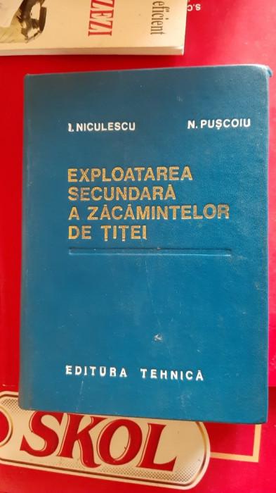 EXPLOATAREA SECUNDARA A ZACAMINTELOR DE TITEI -- I. NICULESCU, N. PUSCOIU