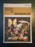 MARIA SUCIU - LUCRARI PRACTICA DE ZOOLOGIE