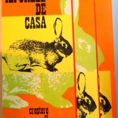 IEPURELE DE CASA- CRESTERE SI VALORIFICARE