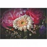 Fototapet floare alba 150 x 100 cm - Hartie foto fara adeziv