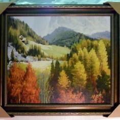 Tablou pictat manual pe panza in ulei Peisaj Natura Toamna A-175 | arhiva Okazii.ro