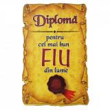Magnet Diploma pentru Cel mai bun FIU din lume, lemn, Alexer