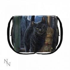 Geanta umar pisici O Intalnire Magica 40 cm - Lisa Parker
