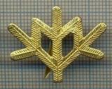 Y 1810 INSIGNA - MILITARA -SEMN DE ARMA -VANATORI DE MUNTE  -PENTRU COLECTIONARI