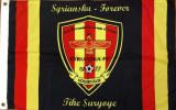 Steag fotbal - Syrianska FC Södertälje (Suedia)