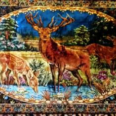 Carpeta Cerbul si caprioarele