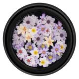 Decoratiune Unghii Nail Art LUXORISE, Flower Illusion
