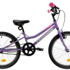 Bicicleta Copii DHS Teranna 2004, Cadru 230mm, Roti 20inch, Frane V-Brake (Violet)