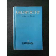 JOHN GALSWORTHY - MARUL IN FLOARE