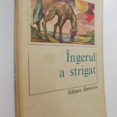 Ingerul a strigat - Fanus Neagu