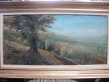 VALSAN - PEISAJ LA UNGURENI ( TARGOVISTE )