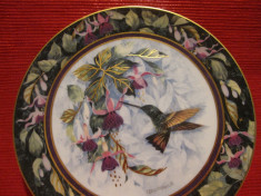 TABLOU / FARFURIE DECORATIVA PORTELAN ROYAL DOULTON FINE BONE CHINA - COLIBRI foto