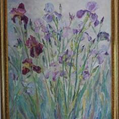 Irisi Catalin Muntean
