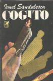 Cogito - Ionel Sandulescu