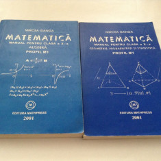MIRCEA GANGA MATEMATICA MANUAL PENTRU CLASA A X A M1-- 2001     RF16/1