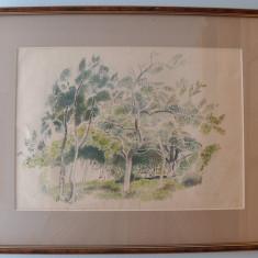 Studiu Elena Greculesi - Acuarela, Natura, Altul