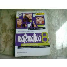 Anton Negrila, Maria Negrila - Matematica. Algebra, geometrie, clasa a VIII-a, partea II