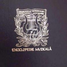 Enciclopedie muzicala, vol. XV. Johannes Brahms (Vinil)