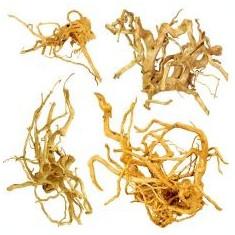 """Cuckoo Root """"EXCLUSIV"""" rădăcină pentru acvariu, 20 - 50 cm"""