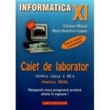 Caiet de laborator pentru clasa a XI-a - Profil real. Teste de evaluare a cunostintelor