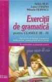 Exercitii de gramatica pentru clasele a III-a si a IV-a. Ed. 2016/Luiza Chiazna, Nelida Beju, Mihaela Filipescu