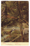 261 - CODLEA, Brasov, Park and Waterfall, Romania - old postcard - used - 1908