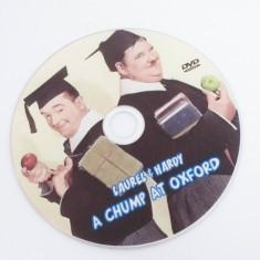 Stan si Bran: A Chump at Oxford, DVD, Altele