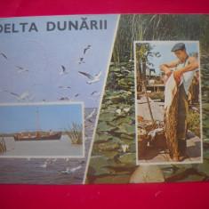 HOPCT 43386  PESCUIT  IN  DELTA DUNARII  -JUD TULCEA-CIRCULATA