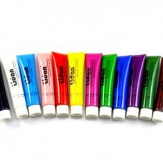 Vopsele acrilice colorate Lidan set 12 buc - VA-06