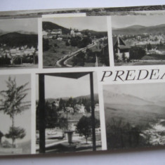 Carte postala - Predeal, Circulata, Fotografie