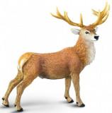 Figurină Cerb roșu, Safari
