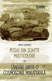 Peisaj din soapte multicolore sau Tandari dintr-o cosmogonie miniaturala | Liviu Lungu, Corint