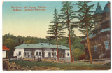 2137 - Rm. SARAT, Buzau, Romania - old postcard - used - 1917, Circulata, Printata