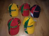 Sepci fotbal echipe nationale Brazilia Portugalia Olanda