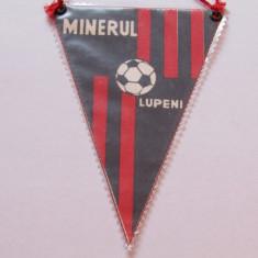 Fanion fotbal - MINERUL LUPENI