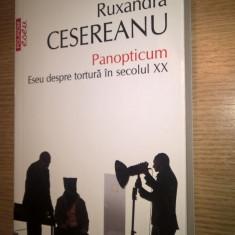 Ruxandra Cesereanu - Panopticum - Eseu despre tortura in secolul XX (2014; ed. 2