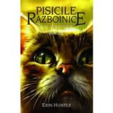Pisicile Razboinice. Vol.11. Amurg