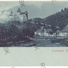 4533 - BRAN, Brasov, Dracula Castle, Litho, Romania - old postcard - unused