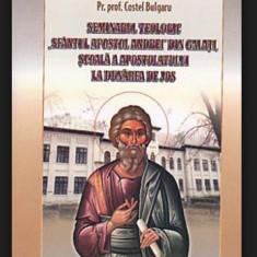 """Seminarul Teologic """"Sfantul Apostol Andrei""""/ L. Petroaia s. a."""