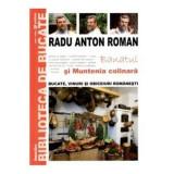 Radu Anton Roman - Banatul și Muntenia colinară ( Nr. 4 )