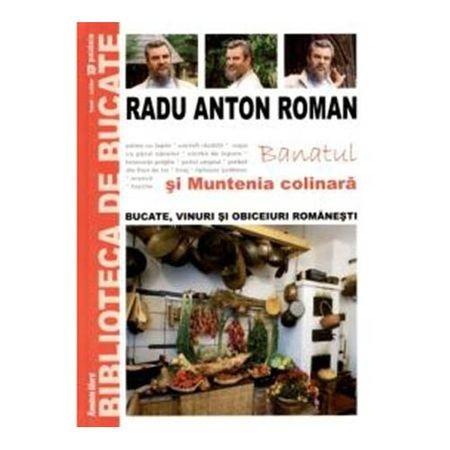 Radu Anton Roman - Banatul și Muntenia colinară