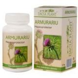 ARMURARIU 60cpr DACIA PLANT 1+1 GRATUIT